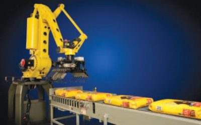A robot solution for cement palletizing